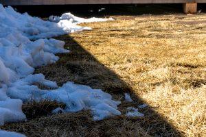 米沢女子短期大学・米沢栄養大学生 女性専用シェアハウス「ぴーちぇすハウス」お庭に雪